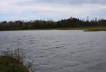 Cross, Ostrea Lake, NS, ,Vacant Land,For Sale,Cross,201814369
