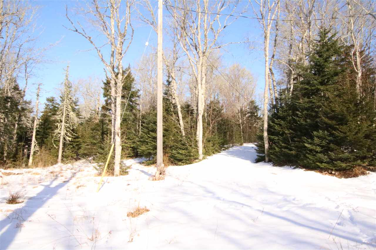 167 Maple, New Ross, NS, ,Vacant Land,For Sale,Maple,202006669